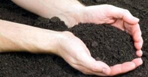 Soil-in-(1)20170506161114
